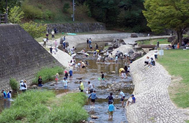 天野川 川遊び