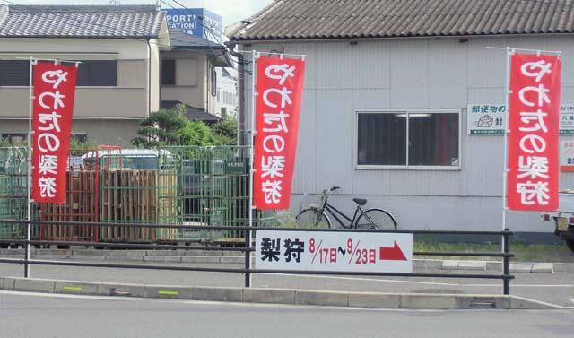 CIMG4488a.jpg