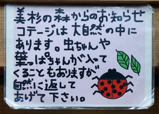 DSC04359a.jpg